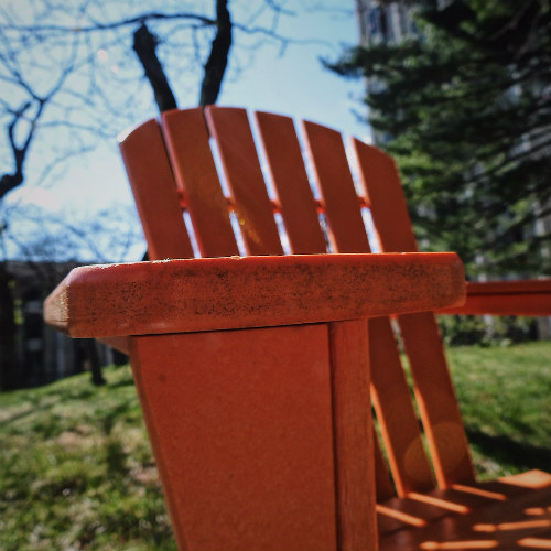 university-of-kentucky-adirondack-chair-spring-campus-geek-equestrian
