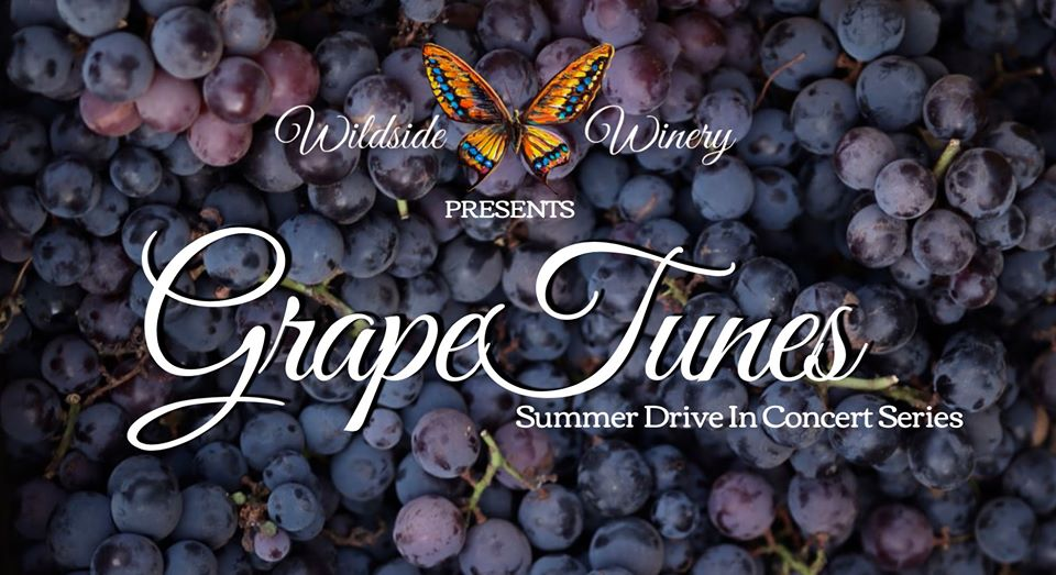 grape-tunes-summer-drive-in-concert-series