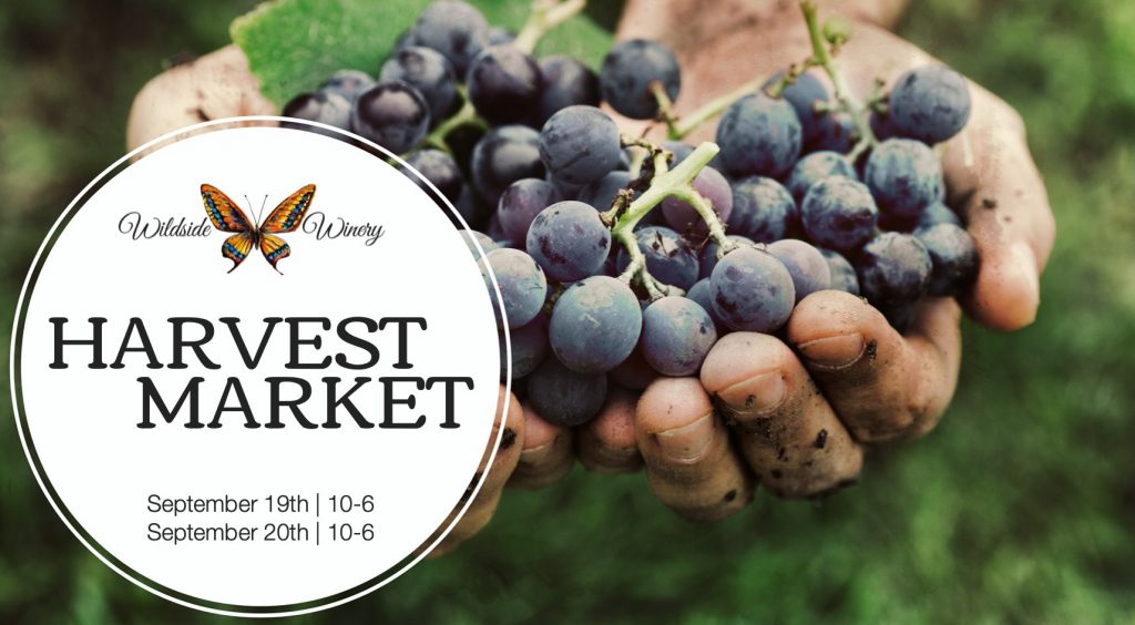 wildside-winery-harvest-market